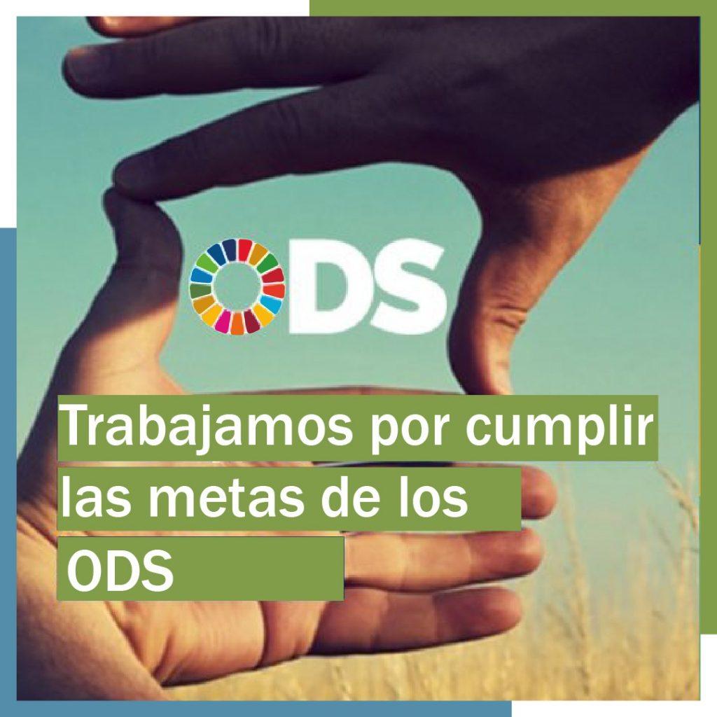 Asemar está comprometida con los ODS